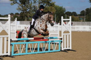 Girl show jumping on a white and brown horse